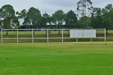 Cricket Field Screening