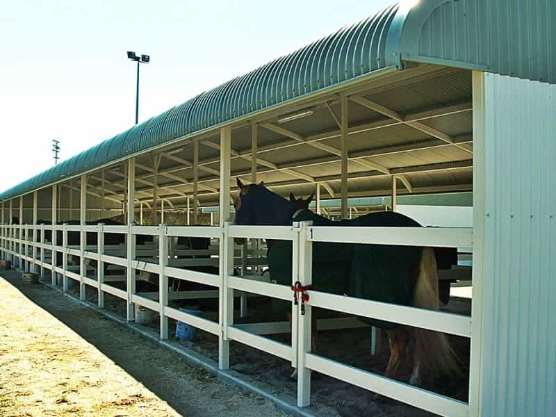 Day Yards and Animal Shelters